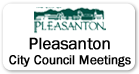 Pleasanton City Council